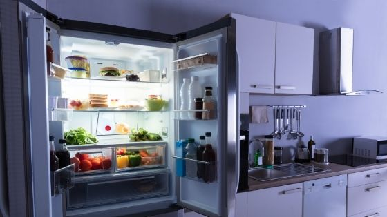 Should We Consider Renting A Refrigerator Based on The Model