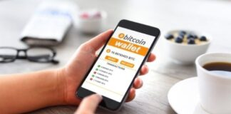 Are you Struggling to Choose a Bitcoin Wallet