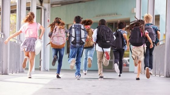 Public and Private Schools: The Main Differences and Peculiarities for Children