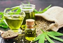 Factors to Check Before Buying Hemp for Cats
